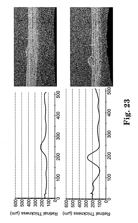 Patent US 20060110428A1