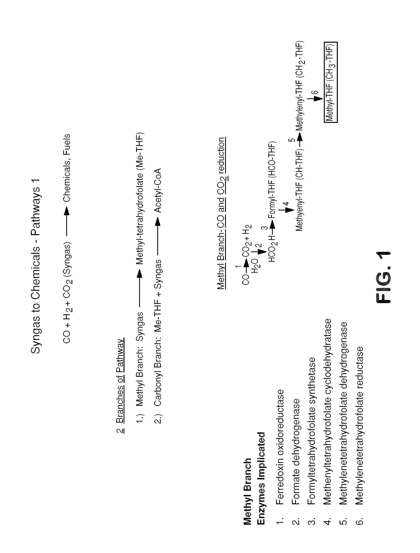 Patent US 9,885,064 B2