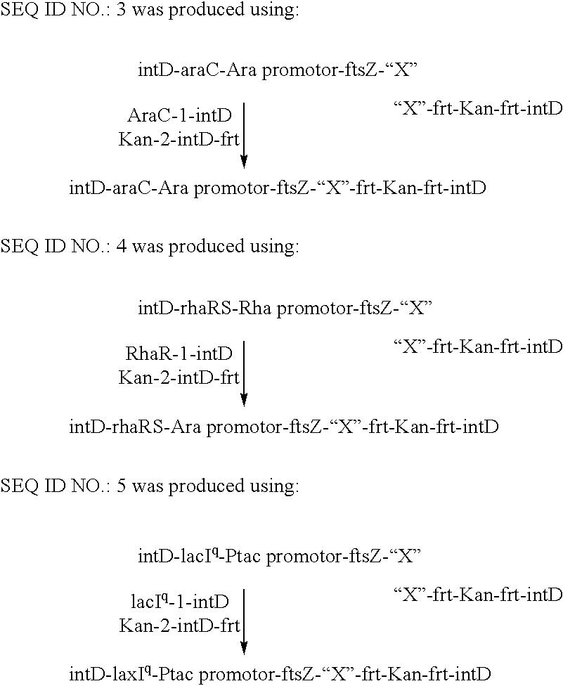 Patent US 20030219408A1
