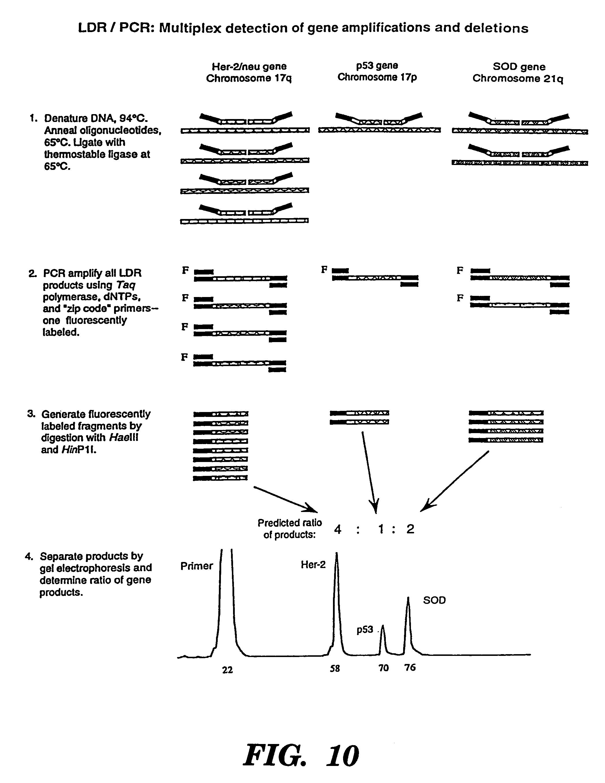Patent US 7,320,865 B2