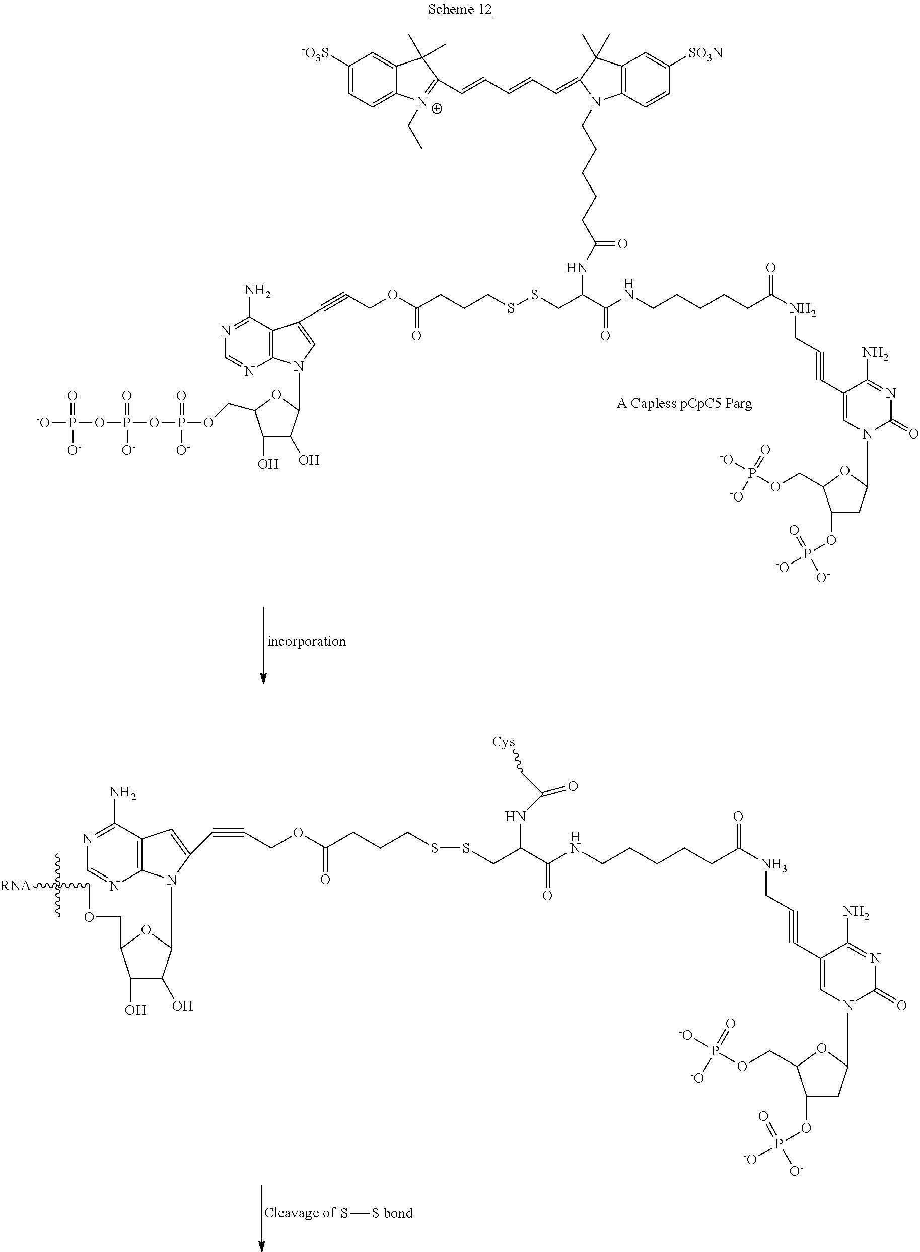 Patent US 9,221,891 B2
